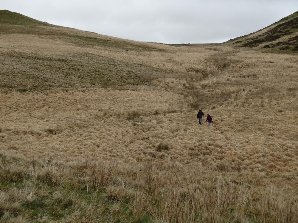 Climbing Disgwylfa Fach