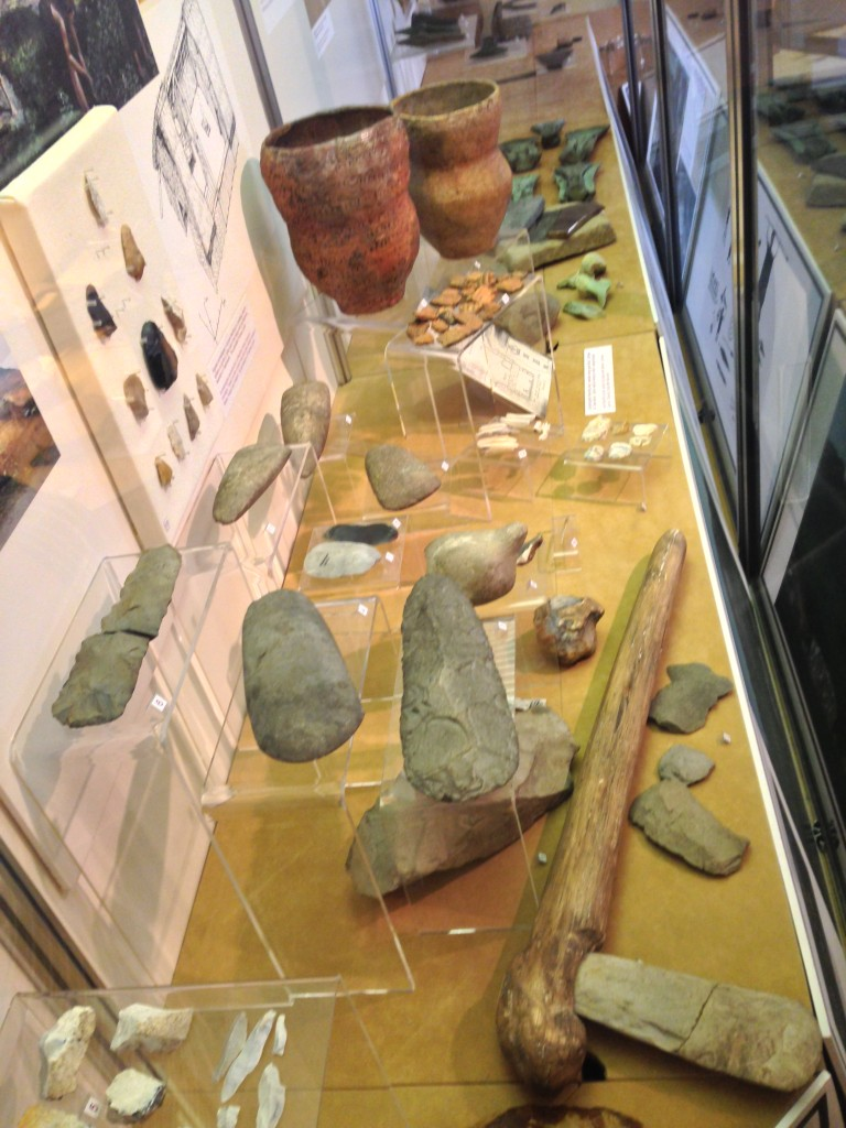 Gem like Bangor archaeology room