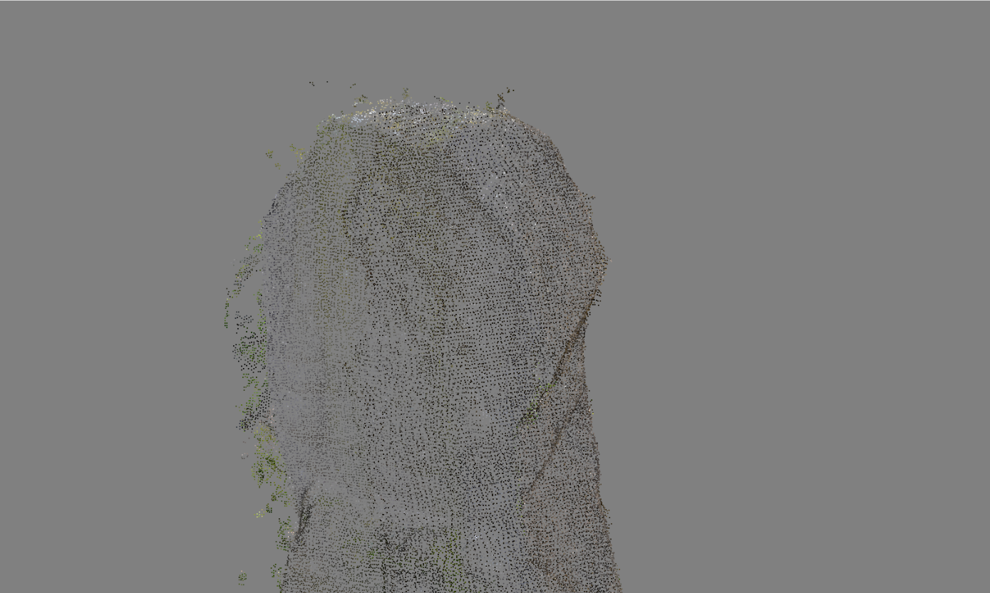 3. Generate Point Cloud